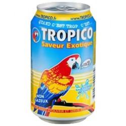 TROPICO 33 CL